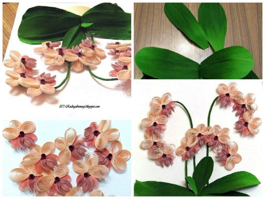 Quilling orchid