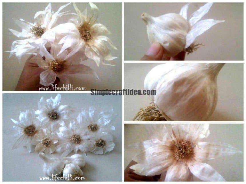 Creating beautiful flowers with garlic