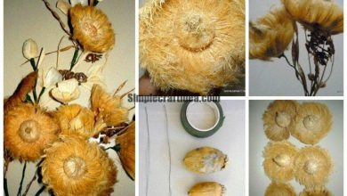 How to Make Flowers from Arecanut