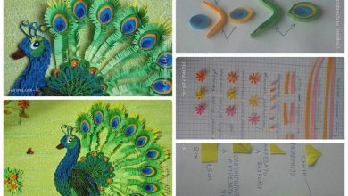 Quilling peacock