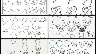 Simple ways that teaches you how to draw