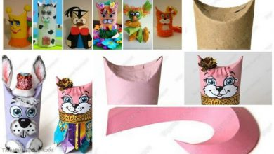 Cats, rabbits and carnival of the animals
