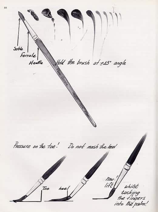brushes (21)