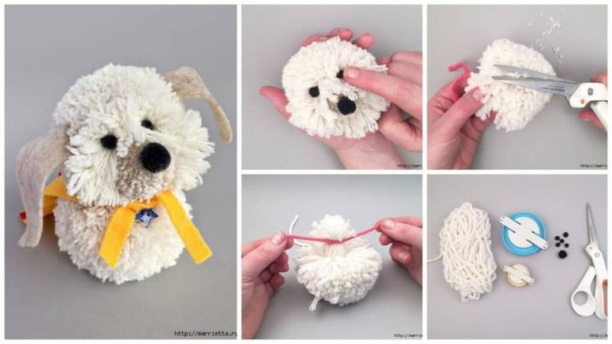 Small poodle of pompons