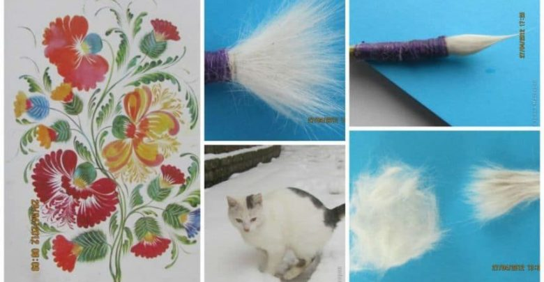 brush from the cat's fur (13)