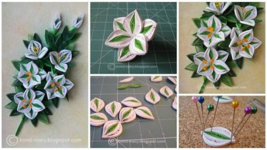 How to make lily