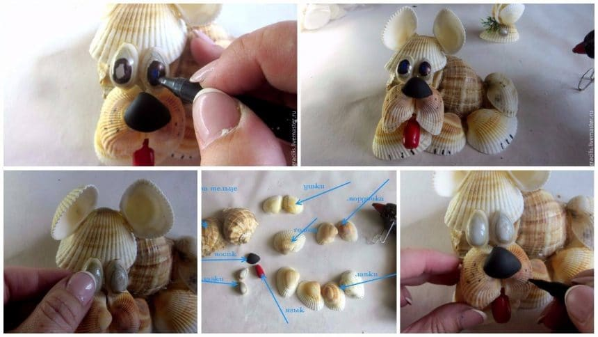 How to make dog from shells