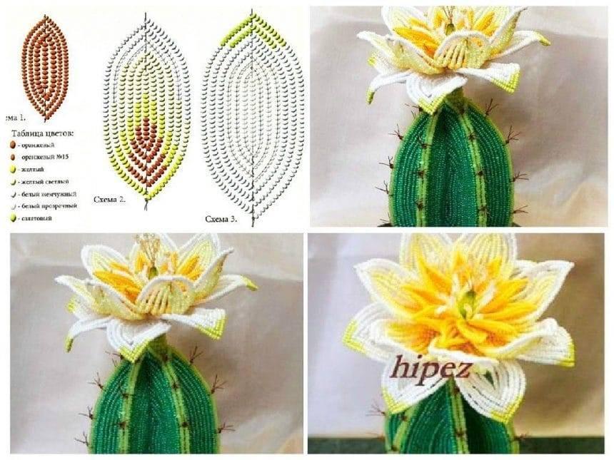 Weave flowering cactus