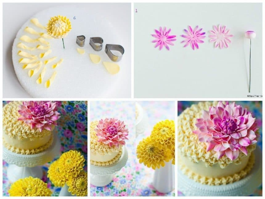 Chrysanthemums to decorate the birthday cake