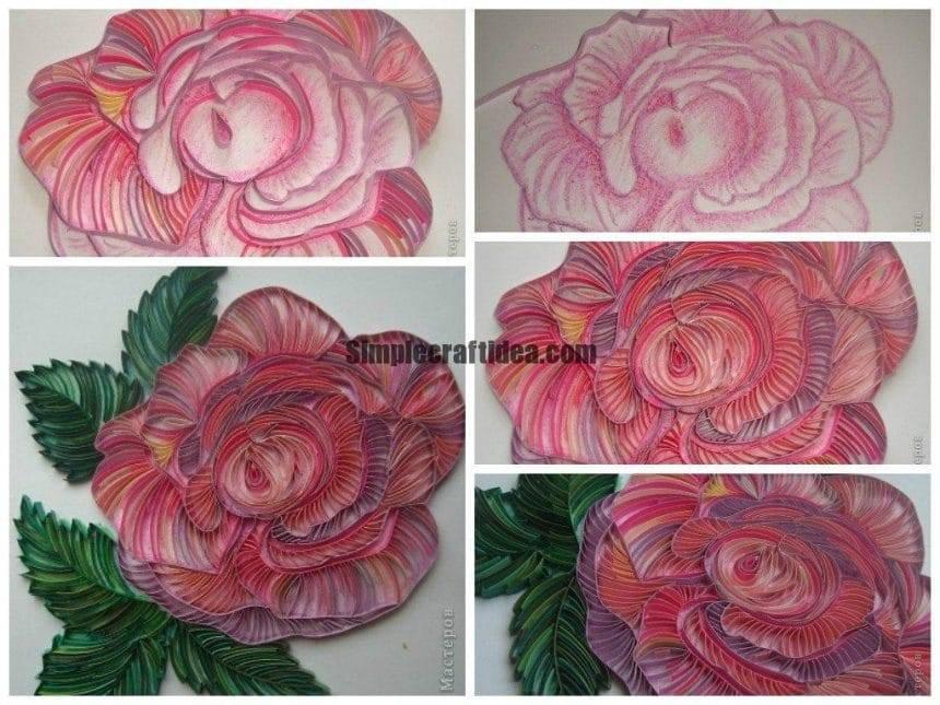 Contour quilling rose
