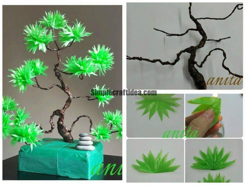 Bonsai tree tutorial