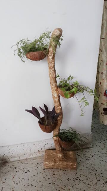 coconut shell flower planter
