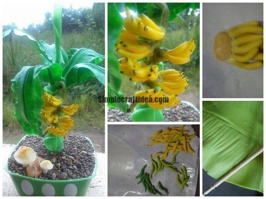 Banana plant making