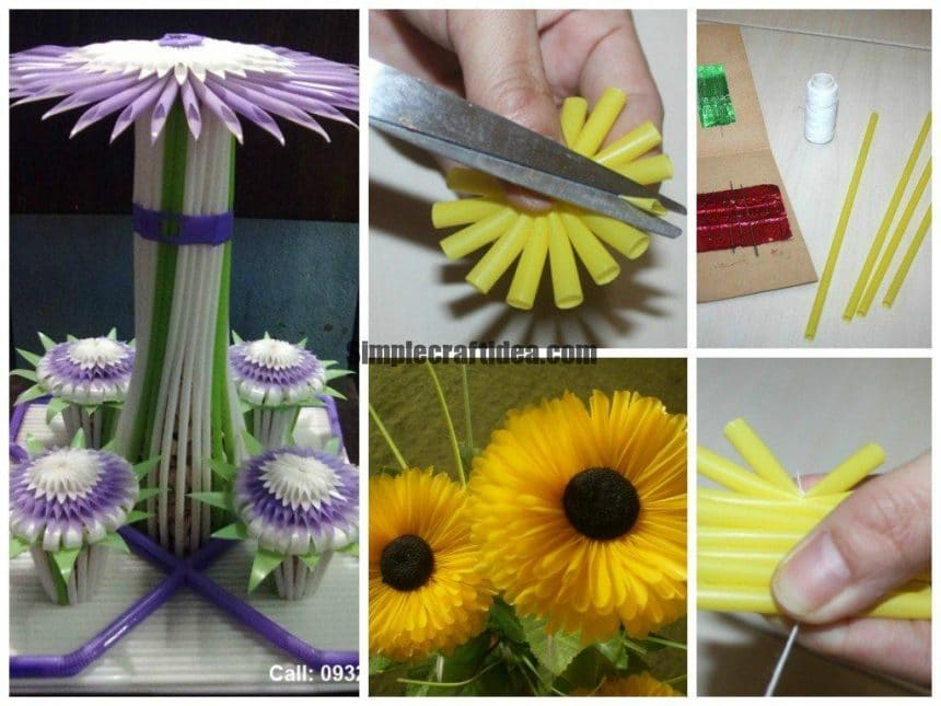 Drinking straw flower