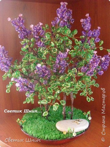 Make A Bonsai Tree From Plastic Bottles Simple Craft Ideas