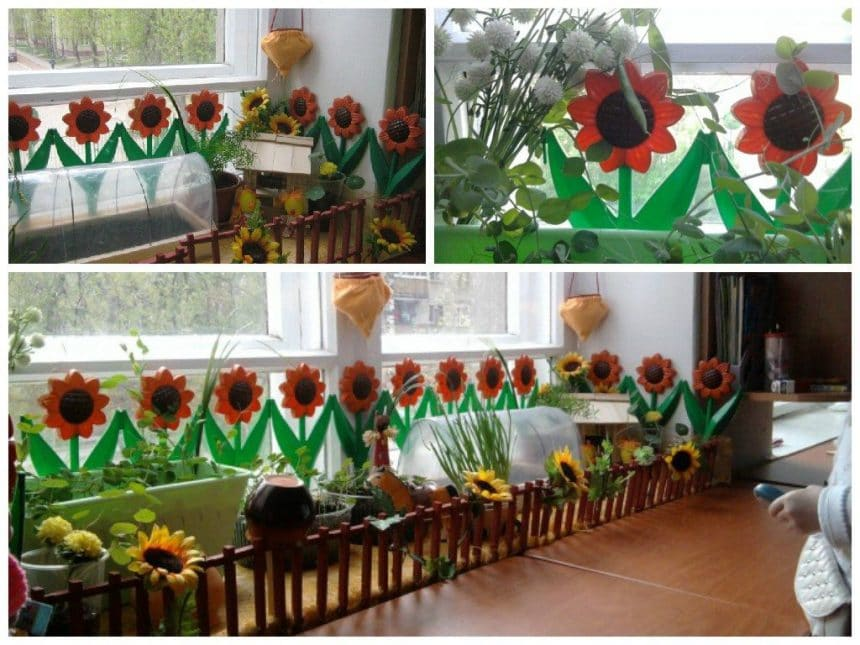 Miracle-garden on the windowsill