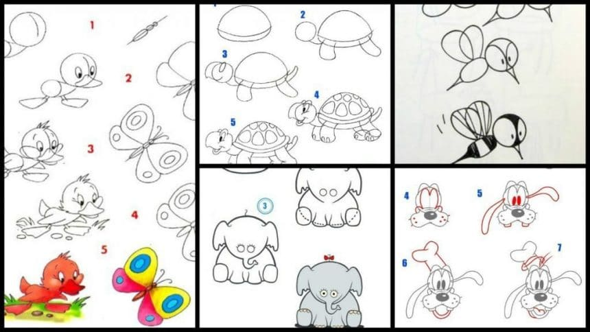 Teach how to draw animal picture