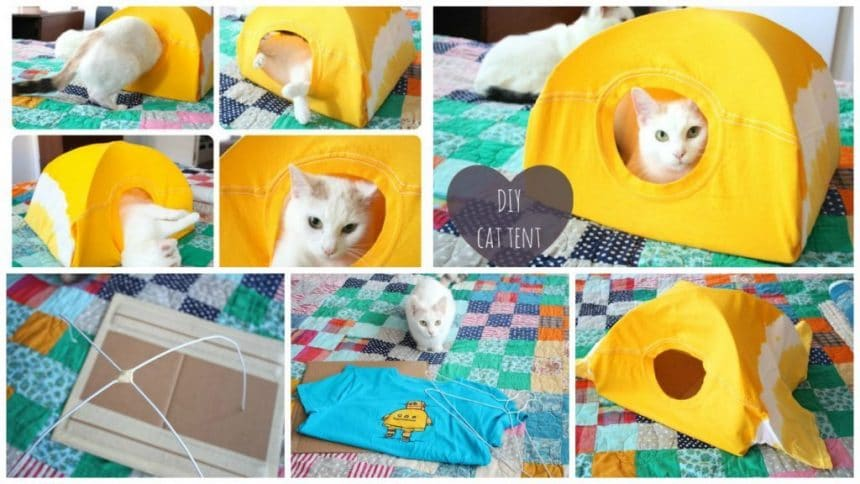 How to make cute cat house
