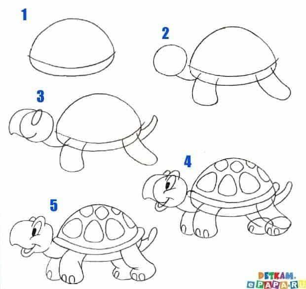 draw (1)
