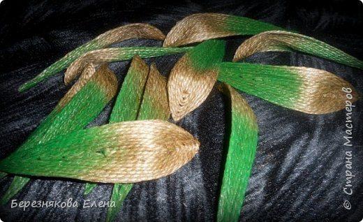 lilies (10)