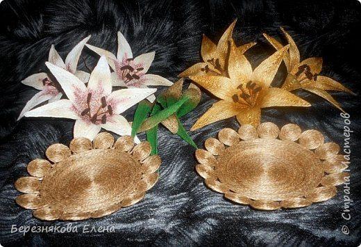 lilies (11)
