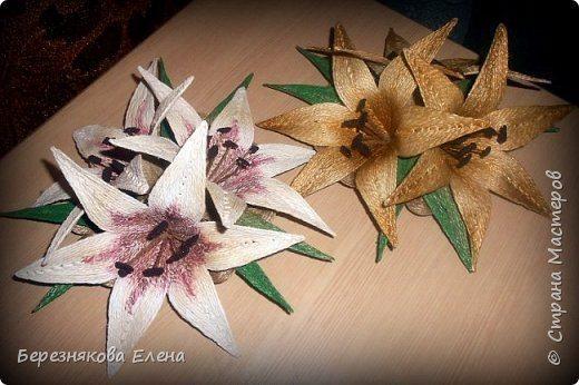 lilies (12)