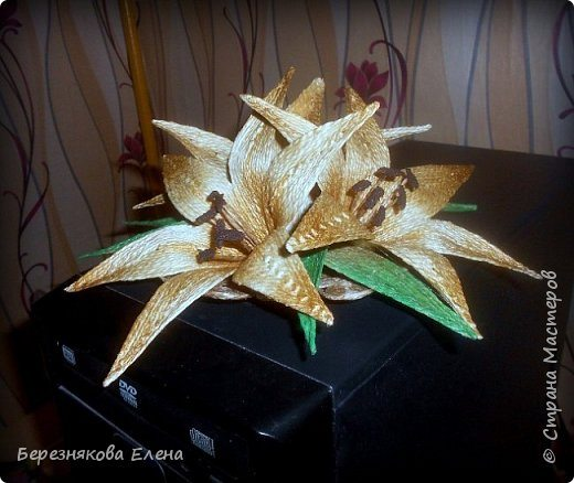 lilies (14)