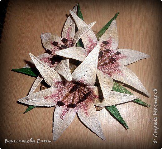 lilies (16)