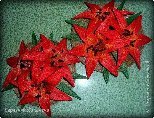 lilies (18)