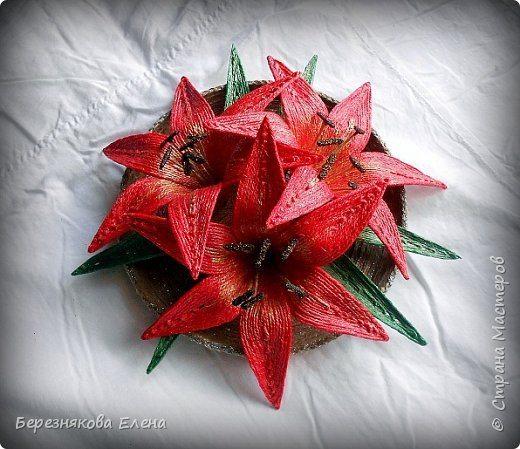 lilies (19)
