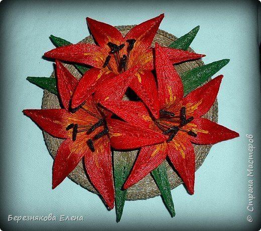 lilies (3)