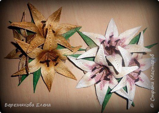lilies (4)