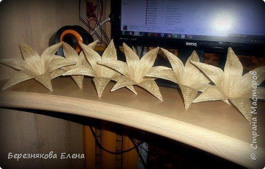 lilies (8)