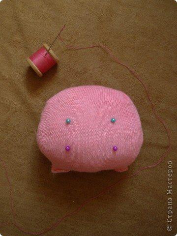 pig (12)