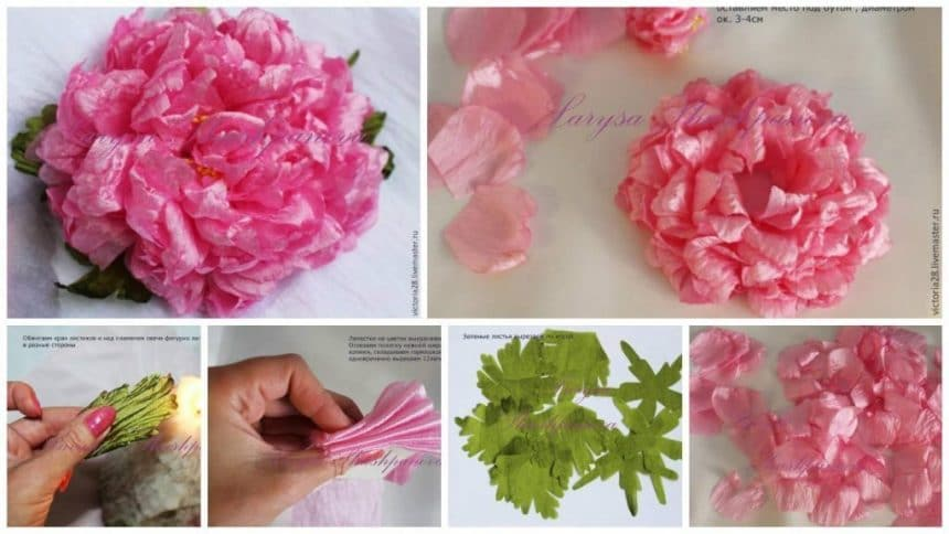 How to make peony flower