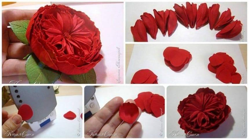 How to make peony rose