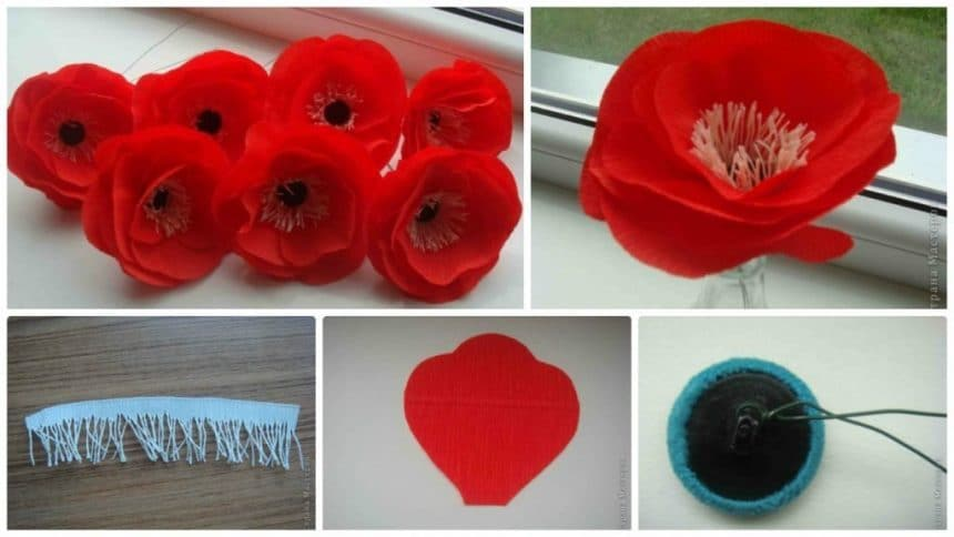 How to make red poppies