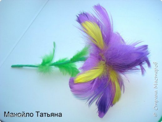 flower from feathers