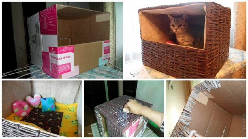 How to make cat house