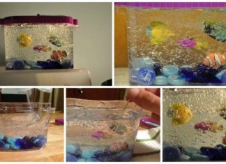 mini decorative aquarium