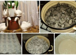 paper mache from egg tray
