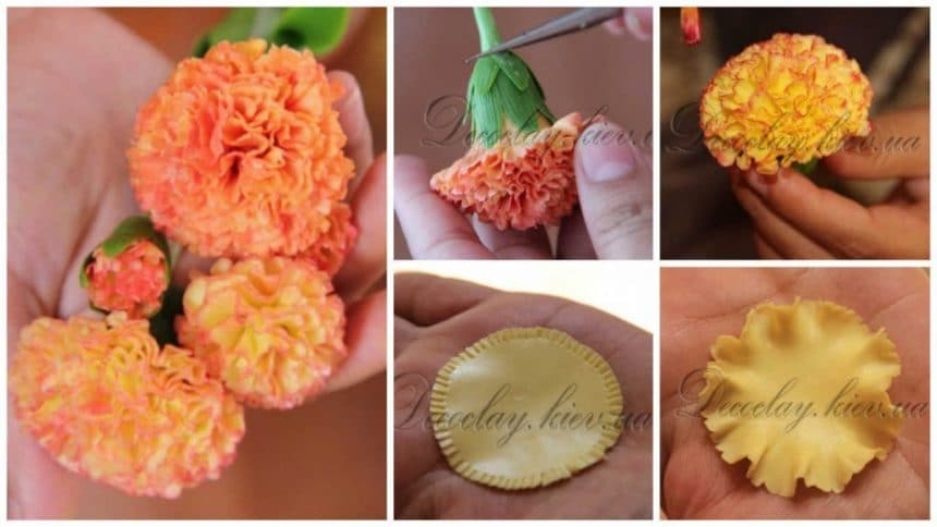 How to modeling carnation from polymer clay