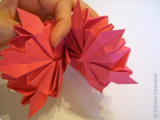 peonies flower from paper