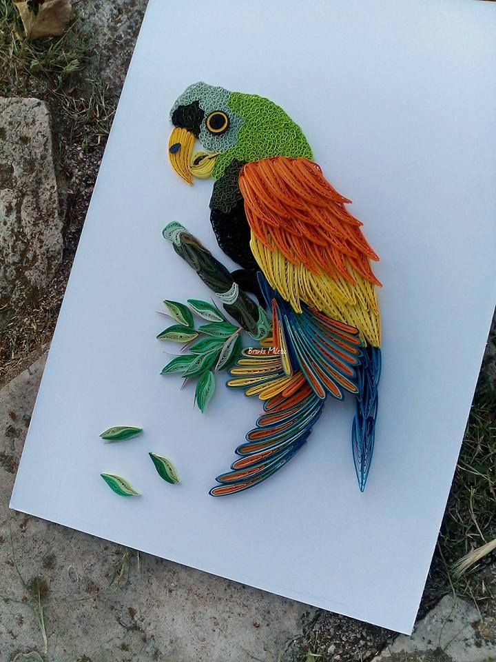 How to make a beautiful rainbow parrot