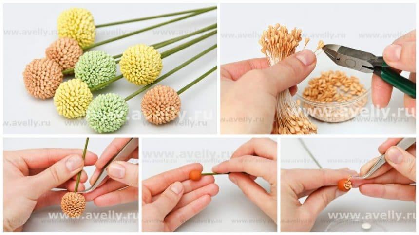 How to make kraspediya flower
