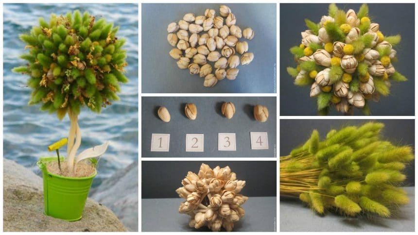 How to create a juicy summer topiary shell pista shell and dried flowers