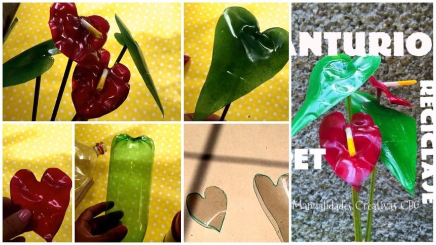 How to make anthurium flower from pet bottle