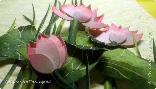 lotus flower lamp