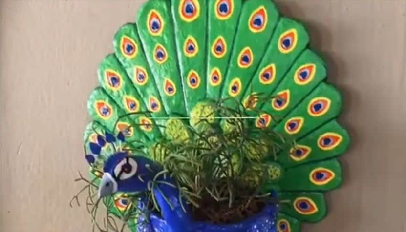 peacock wall pot