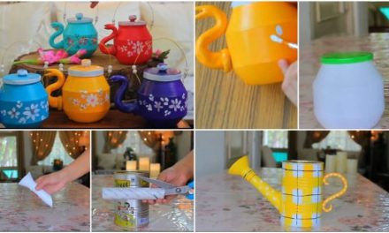 6 Best ideas to recycle plastic bottle